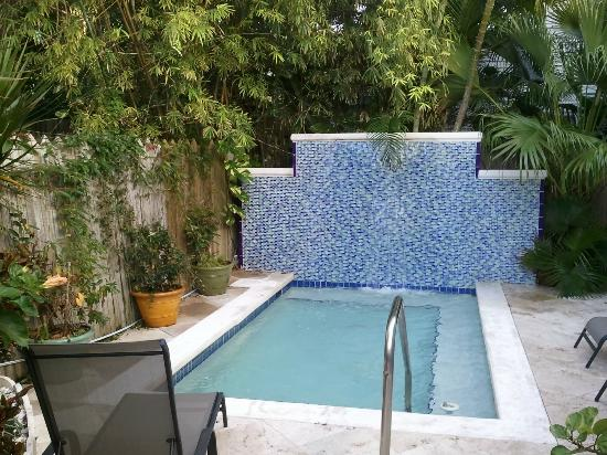 Artist House on Fleming: The dipping pool with waterfall. Very relaxing after a day of sightseeing.