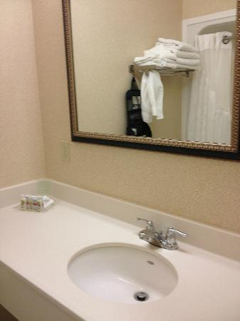 Holiday Inn Hotel & Suites Beckley: Plenty of towels and counter space, but no magnifying mirror