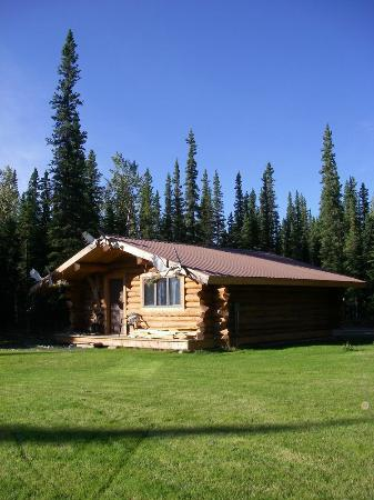 Tok, AK: Cloudberry Cabin