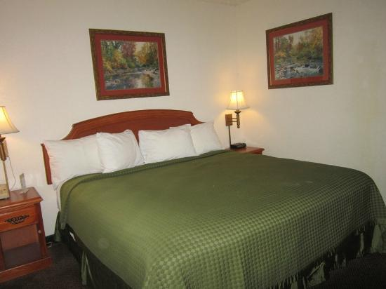 BEST WESTERN Llano: bedroom