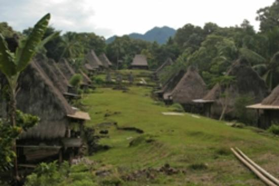 Flores, إندونيسيا: Belaraghi village 