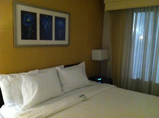 SpringHill Suites Pittsburgh Airport : King Room (#316)