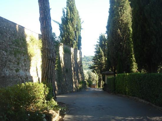 Vignamaggio: Gardens