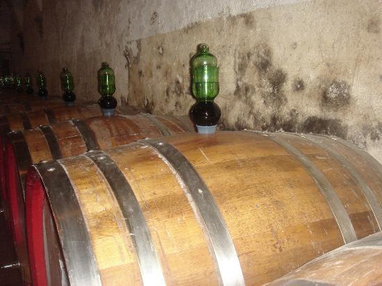 Vignamaggio: Winery