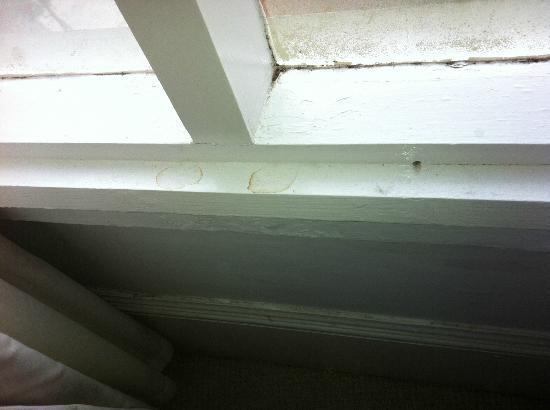 Green Gables Bed & Breakfast: Unclean window panels