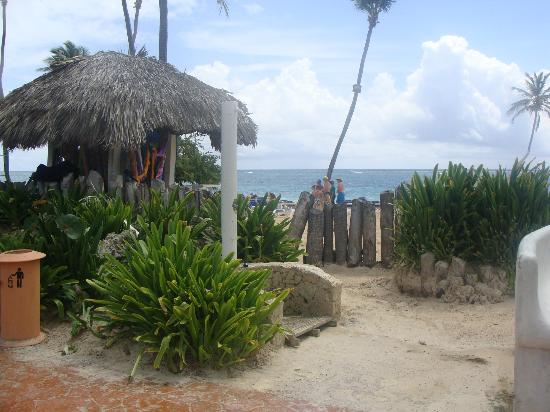 VIK Hotel Cayena Beach: Beach Area