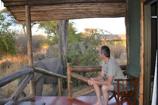 Kirurumu Tarangire Lodge: Morning visitors at Kururumu