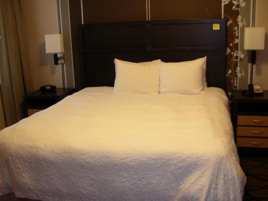Hampton Inn & Suites Buffalo Downtown: King Suite - Bedroom