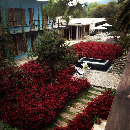 Hotel Bo: Jardín