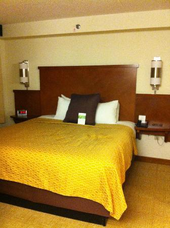 Hyatt Place Auburn Hills: The bed