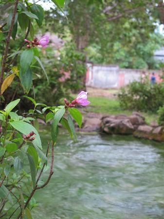 Bajawa, Indonesien: Mangeruda Hotspring
