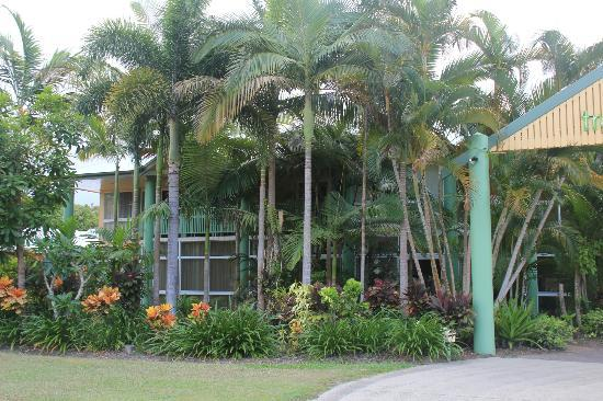 Tropical Nites: Example of gardens / plantings.