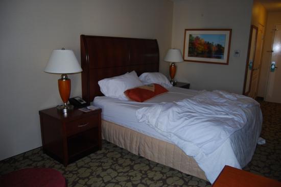 Hilton Garden Inn LAX/El Segundo: Bed