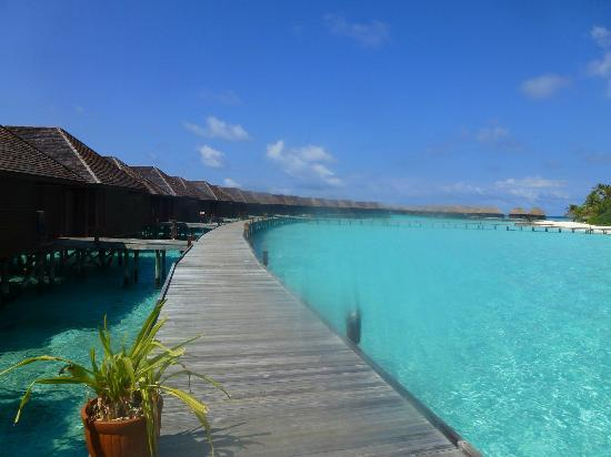 Veligandu Island Resort & Spa: View of JWV 155 to 174