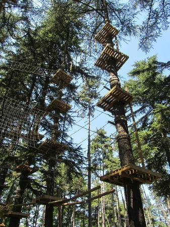 Vertical Labyrinth Parco Avventura Salice Terme