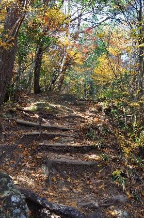 Horaiji Temple : 東海自然歩道