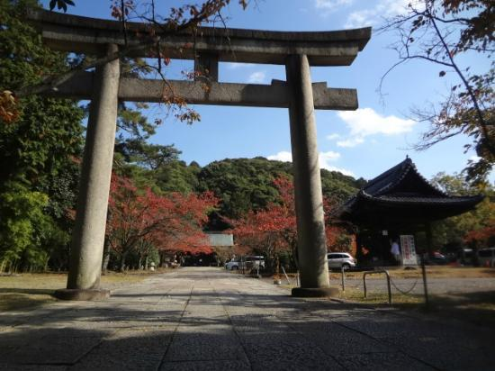 Hokokubyo