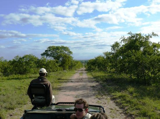 andBeyond Ngala Safari Lodge: Heading out for the day