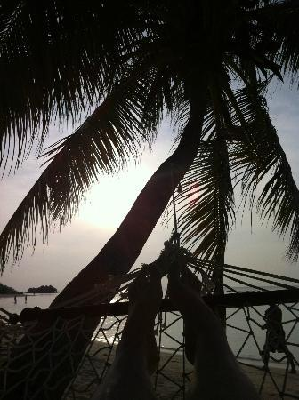 Kuredu Island Resort & Spa: Relaxing in a hammock