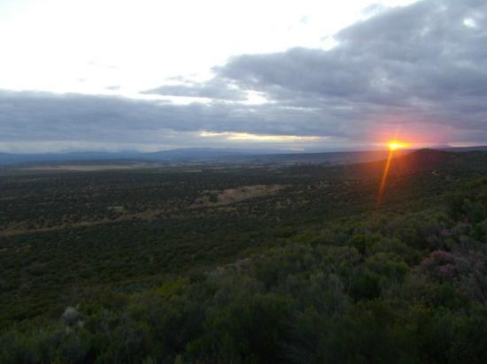 Buffelsdrift Game Lodge: Sunset game drive