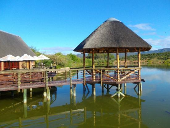 Buffelsdrift Game Lodge: Wedding venue