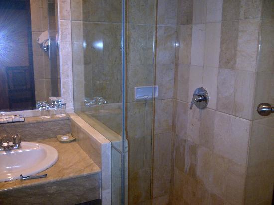 Twin Plaza Hotel Jakarta: bathroom
