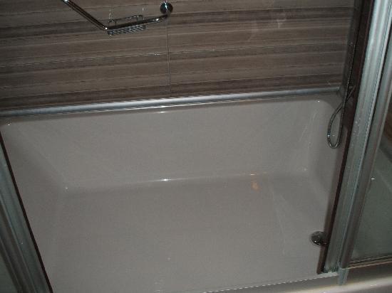 ديلفين بالاس - شامل جميع الخدمات: Huge bath 