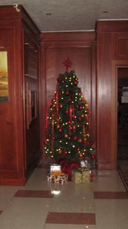 Maxi Park Hotel & Spa : Advent