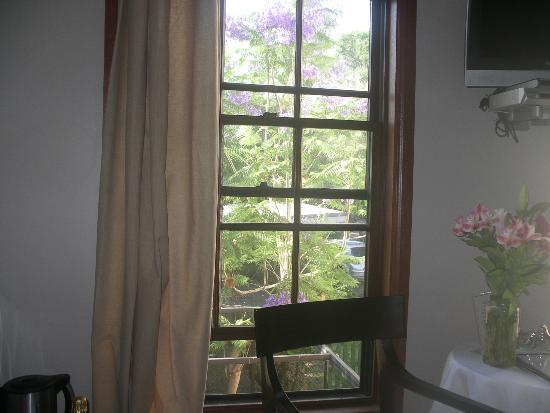 The Bronte Boutique Hotel: Jacaranda from the Edward Close room.