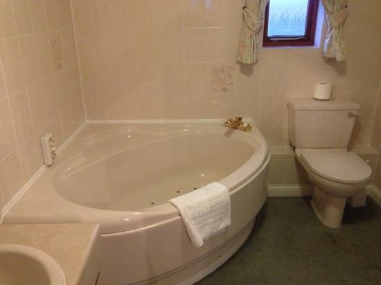Marsh Farm Hotel: spa bath in executive double