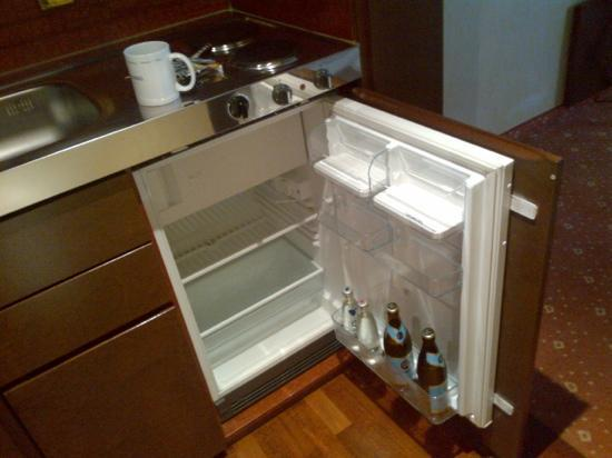 Derag Livinghotel Prinzessin Elisabeth: interessanter Kühlschrank mit SEHR viel Inhalt