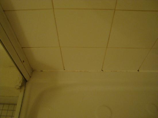 Le Domaine du Levant : douche