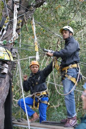 Tsitsikamma Canopy Tours: Thanks guys, we had a great time!