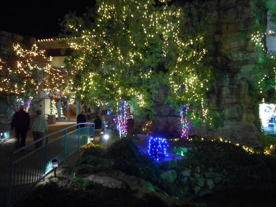 Andy Williams' Moon River Theater : Andy's touch on the Moon River grounds at Christmas