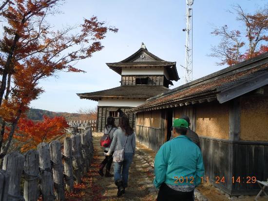Joshi Park Asuke-jo Castle: 本丸の高櫓、長屋