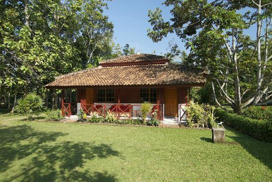 Satwa Elephant Eco Lodge: SATWA ECO LODGE BUNGALOW