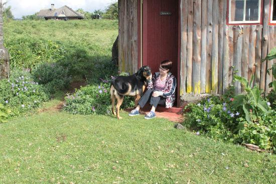 Castle Forest Lodge: Bobo was keen to make friends