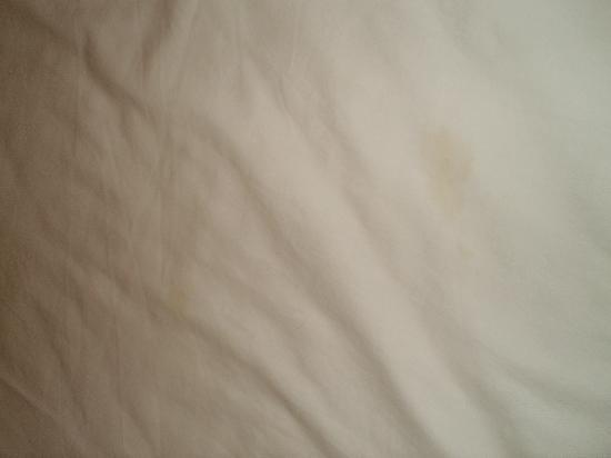 Thaphae Garden Guesthouse: Dirty stained bed sheets