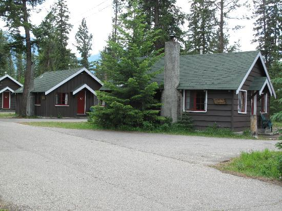 Pine Bungalows: pines