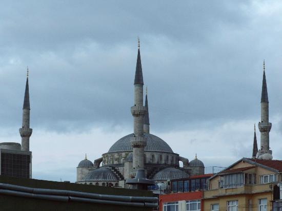 Tria Hotel Istanbul: Вид с террассы