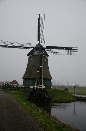 Scooter Experience - Day Tours: Windmill outside Volendam