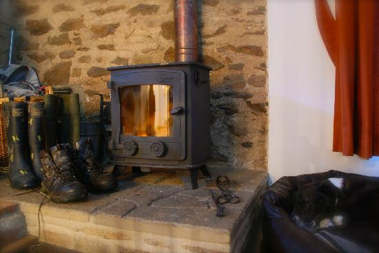 West Hollowcombe Self Catering Cottages : The Log Burner in 'Smiddy