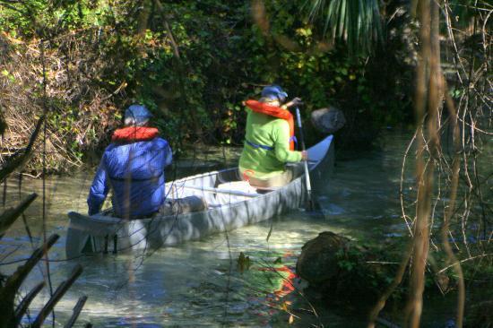Juniper Springs Recreation Area: Canoe Launch