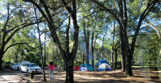 Juniper Springs Recreation Area: Camping