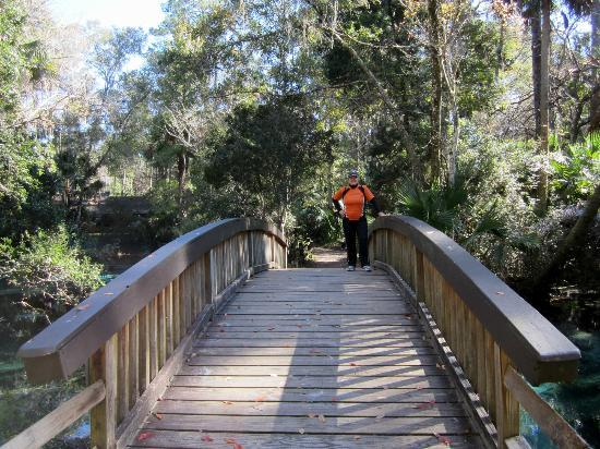 Juniper Springs Recreation Area: Bridge