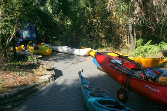 Juniper Springs Recreation Area: Canoe trip