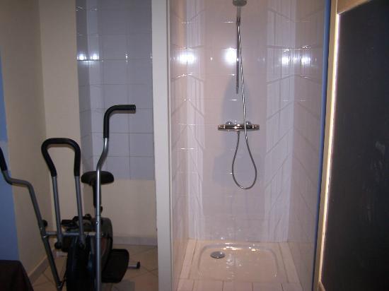 Les Fleurs Bleues: douche sauna