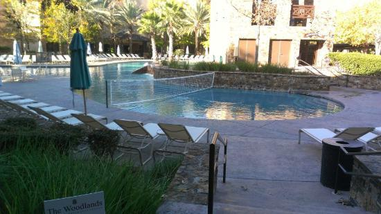 The Woodlands Resort: It was TOO cold to get in the water--but the pool looked amazing!