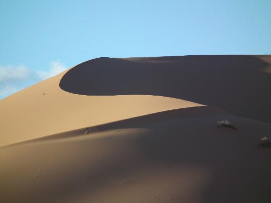 Auberge Camping Ocean Des Dunes: La grande dune.