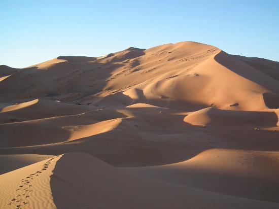 Auberge Camping Ocean Des Dunes: La grande dune et ses petites soeurs.
